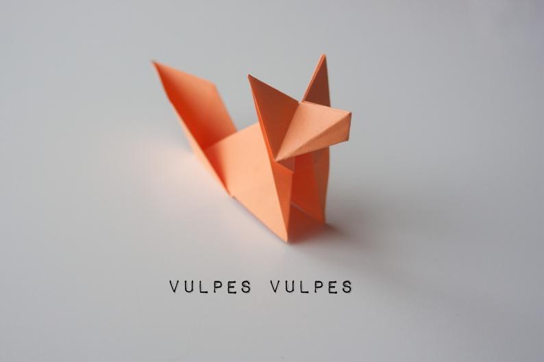 VulpesVulpes